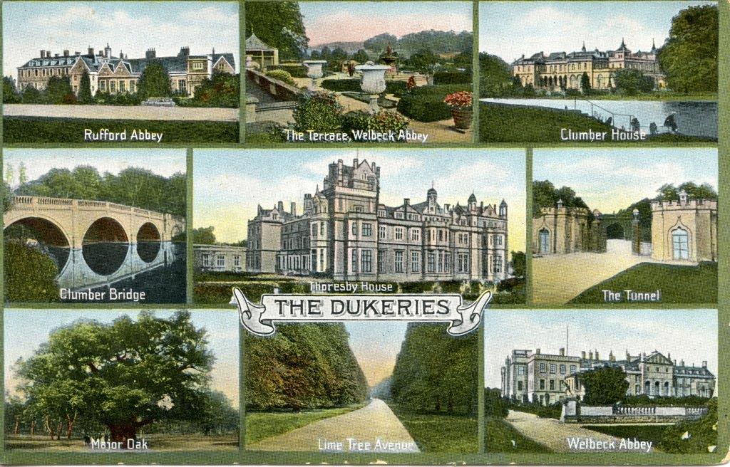 The Dukeries Views Postcard n.d.